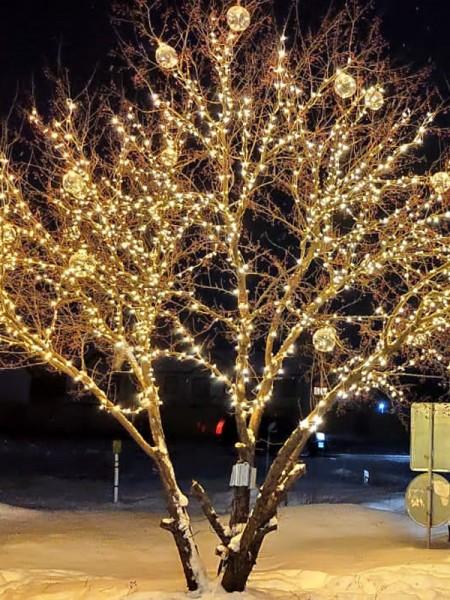 Комплект для подсветки деревьев: 100м клип-лайта + гирлянда с шарами 18-22см