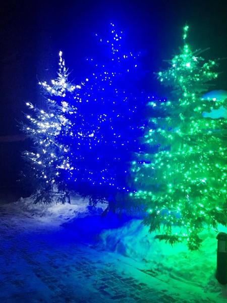 Светодиодный клип-лайт c флеш-эффектом для светового украшения деревьев. Зеленый