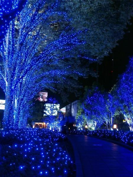 Светодиодный клип-лайт для светового украшения деревьев. Сине-белый