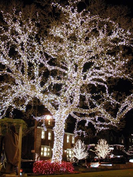 Светодиодный клип-лайт для светового украшения деревьев. Белый