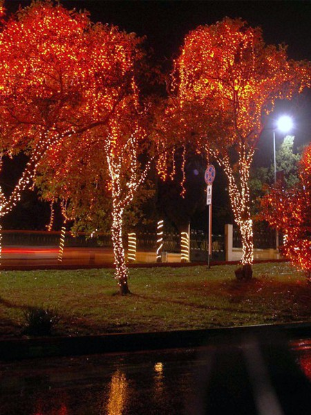 Светодиодный клип-лайт c флеш-эффектом для светового украшения деревьев. Красный