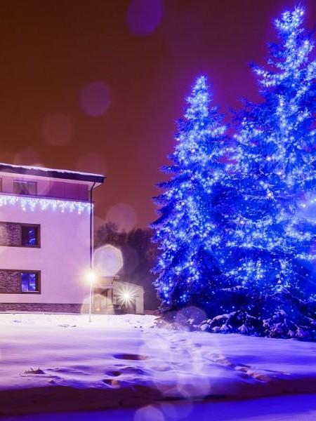 Светодиодный клип-лайт  c флеш-эффектом для светового украшения деревьев. Синий