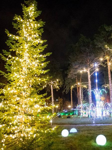 Светодиодный клип-лайт c флеш-эффектом для светового украшения деревьев. Теплый белый