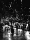 Светодиодный клип-лайт c флеш-эффектом для светового украшения деревьев. Белый