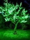 Светодиодный клип-лайт для светового украшения деревьев. Зеленый