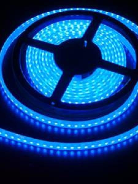 Светодиодная лента LUX герметичная 3528 120 диодов синяя