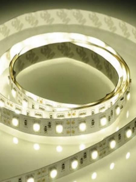 Светодиодная лента LUX герметичная 3528 120 диодов дневной белый