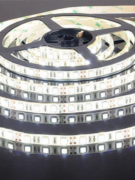 Светодиодная лента ECONOM герметичная 5050 30 диодов белая