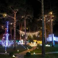Световые растяжки для парков