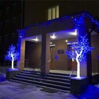 Кристальные световые деревья купить