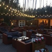 Светодиодные гирлянды купить для подсветки ресторанов
