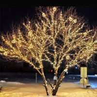 Подсветка дерева золотыми шарами