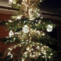 Световое оформление деревьев светодиодными гирляндами