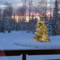 Светодиодный клип лайт на деревья