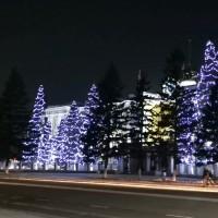 Гирлянды светодиодные для подсветки деревьев разных цветов