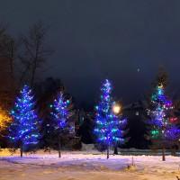 Разноцветные светодиодные гирлянды для деревьев