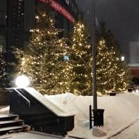 Светодиодный клип лайт для подсветки деревьев