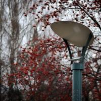 Парковый фонарь отраженного света купить