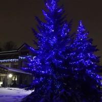 Синий светодиодный клип-лайт