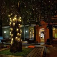 led гирлянды для подсветки колонн