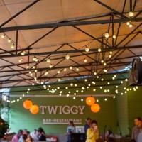 Светодиодные гирлянды в Twiggy
