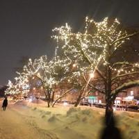 Гирлянды для светового оформления деревьев